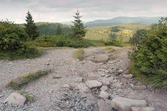 Bosque y montañas imagenes de archivo