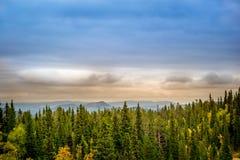 Bosque y montañas brumosas Fotografía de archivo