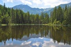 Bosque y montañas reflectores del lago debajo del cielo nublado imagen de archivo