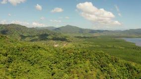Bosque y montañas tropicales, Palawan, Filipinas almacen de metraje de vídeo