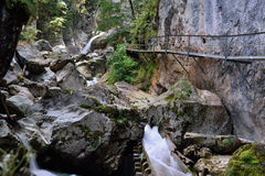Bosque y piedras salvajes Foto de archivo