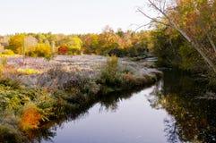 Bosque y río del otoño temprano por la mañana foto de archivo