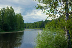 Bosque y río escénicos Fotos de archivo