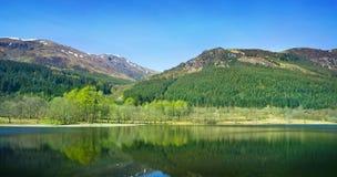 Bosque y reflexiones de Mountian Imagen de archivo libre de regalías
