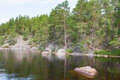 Bosque y rocas en un lago Foto de archivo libre de regalías