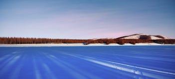 Bosque y snowland inmensos Fotografía de archivo libre de regalías