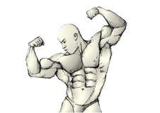 Bosquejar al bodybuilder libre illustration