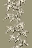 Bosquejo de la hiedra Imagen de archivo libre de regalías
