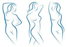 Bosquejo de la mujer,   ilustración del vector