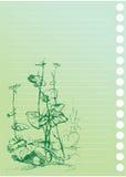 Bosquejo de la planta del burdock ilustración del vector