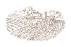 Bosquejo de la yarda del vino ilustración del vector