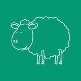 Bosquejo de las ovejas Imagen de archivo