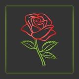 Bosquejo de Rose Adorno de Rose Elementos del diseño floral Ilustración del vector Diseño elegante del esquema de la flor Símbolo Foto de archivo libre de regalías