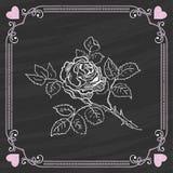 Bosquejo de Rose en un fondo de la pizarra Tarjeta de la tarjeta del día de San Valentín Imagen de archivo libre de regalías