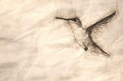 Bosquejo de un colibrí rufo adorable que asoma en vuelo profundamente en el bosque libre illustration