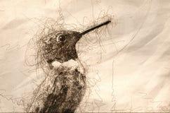 Bosquejo de un perfil Ruby-Throated del colibrí ilustración del vector