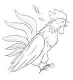 Bosquejo del gallo Fotos de archivo