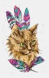 Bosquejo del gato Fotos de archivo libres de regalías