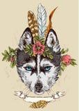 Bosquejo del perro esquimal Imagen de archivo libre de regalías