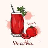 Bosquejo del smoothie del tomate en vidrio con la paja Ilustración del vector Fotos de archivo libres de regalías