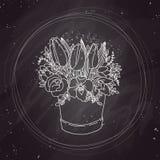 Bosquejo del vector, ramo de la primavera en la pizarra Imagen de archivo libre de regalías