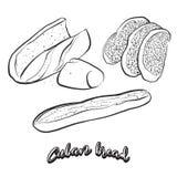 Bosquejo dibujado mano del pan cubano del pan ilustración del vector