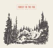 Bosquejo dibujado vector brumoso de la montaña del bosque del pino de la niebla ilustración del vector