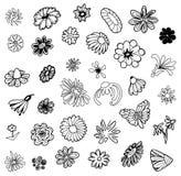 Bosquejo exhausto de la mano del vector del ejemplo de los símbolos de la flor en el fondo blanco stock de ilustración