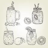 Bosquejo gráfico de diversos iconos del smoothie Vector el mango, el kiwi, el arándano, el pomelo y la línea bebidas Imágenes de archivo libres de regalías
