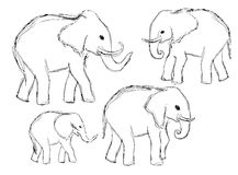 Bosquejo a mano de elefantes ilustración del vector