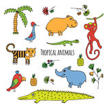 Bosquejo tropical de los animales ilustración del vector