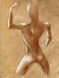 Bosquejos de la figura femenina muscular Imagenes de archivo