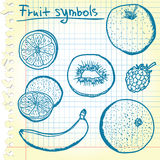 Bosquejos de la fruta Fotografía de archivo libre de regalías