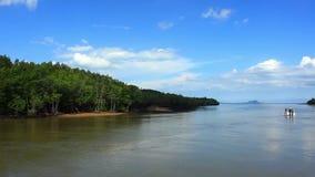 Bosques del mangle en Phuket, Tailandia almacen de video