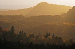 Bosques del otoño cubiertos por la calina ligera fotos de archivo