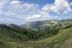 Bosques que cubren los acantilados Imagen de archivo