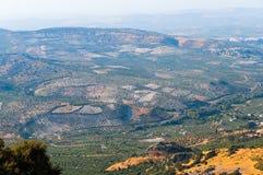 Bosques verde-oliva da serra Córdova Fotos de Stock Royalty Free