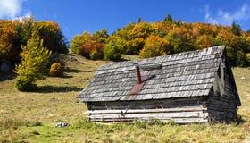 Bosrijk chalet op de bergen stock fotografie