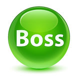 Boss glassy green round button Royalty Free Stock Photo