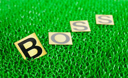 Boss on green background. Boss, text on green background Royalty Free Stock Photo