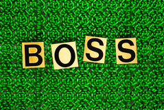 Boss on green background Stock Photos