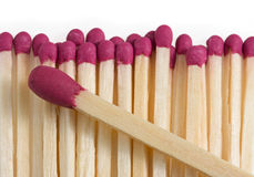 Boss matchstick and crowd Royalty Free Stock Photos
