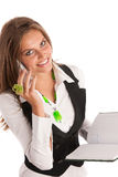 The boss - Preety business secretarry woman working in office is Stock Image