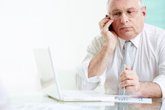 Boss speaking. Portrait of mature businessman speaking on the phone in office Stock Photo