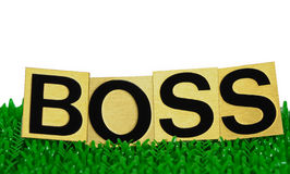 Boss text. Boss, text on white background Stock Photography