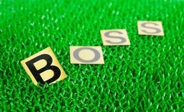 Bossage de fond vert Photo libre de droits