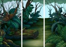 Bosscènes met veel bomen vector illustratie
