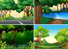 bossen stock illustratie