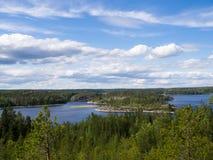 Bossen dichtbij meer Ladoga Stock Foto's