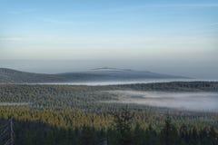 Bossen onder de ochtendmist in de Europese bergen stock afbeelding